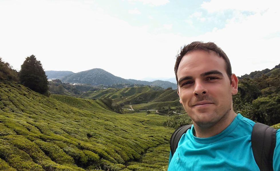 Cameron Highlands en Malasia, totalmente recomendable